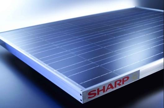 Tấm pin mặt trời Sharp có lịch sử hình thành và phát triển lâu đời